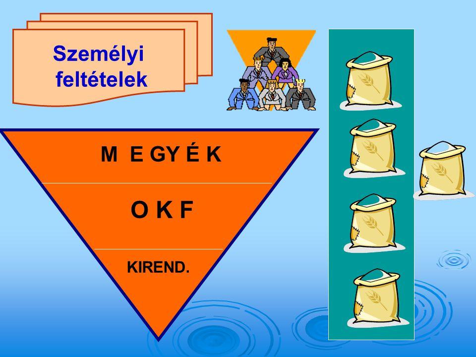 Személyi feltételek O K F M E GY É K KIREND.