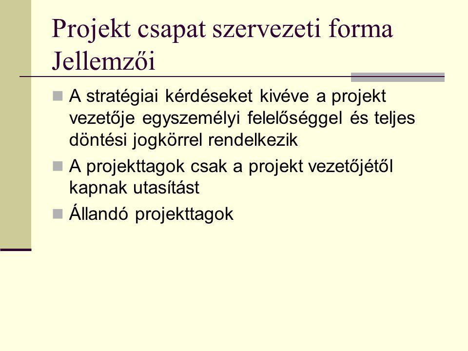 Projekt csapat szervezeti forma Jellemzői  A stratégiai kérdéseket kivéve a projekt vezetője egyszemélyi felelőséggel és teljes döntési jogkörrel rendelkezik  A projekttagok csak a projekt vezetőjétől kapnak utasítást  Állandó projekttagok