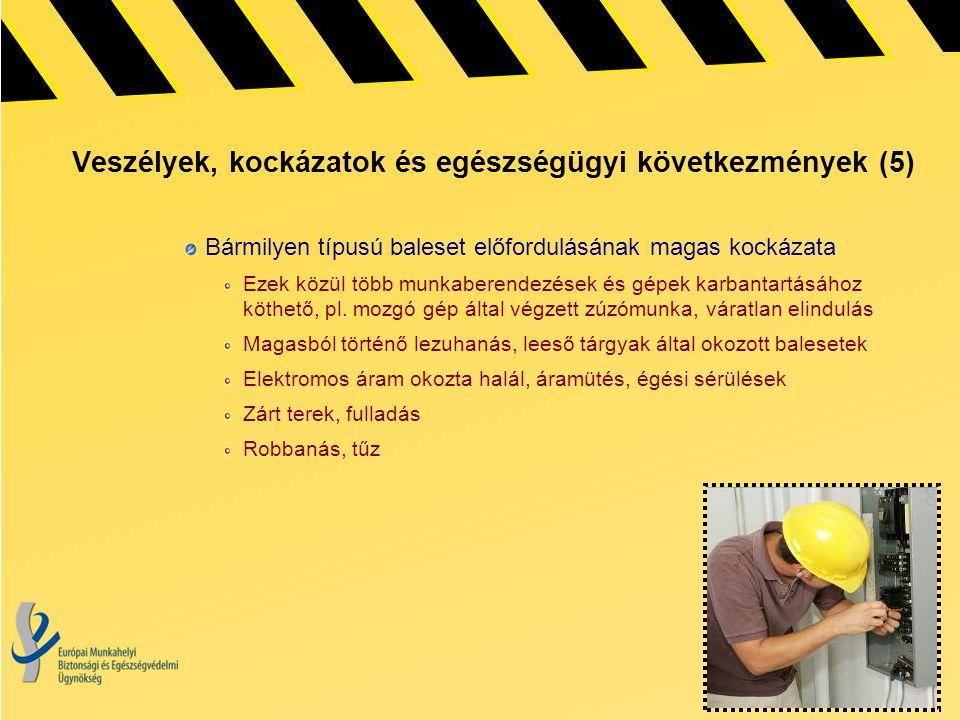 Veszélyek, kockázatok és egészségügyi következmények (5) Bármilyen típusú baleset előfordulásának magas kockázata Ezek közül több munkaberendezések és