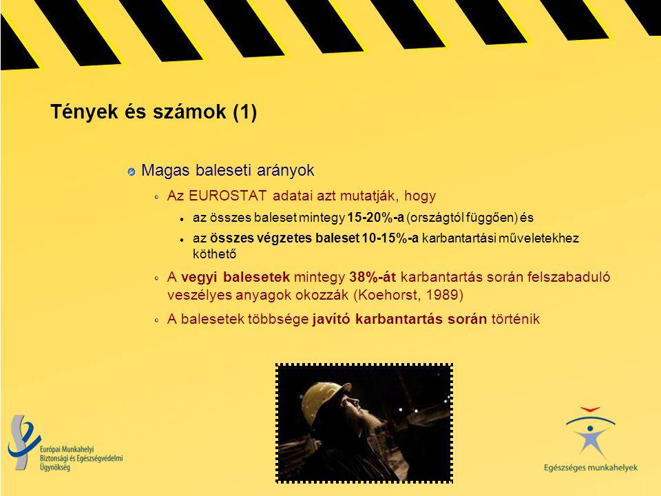 Tények és számok (1) Magas baleseti arányok Az EUROSTAT adatai azt mutatják, hogy  az összes baleset mintegy 15-20%-a (országtól függően) és  az öss