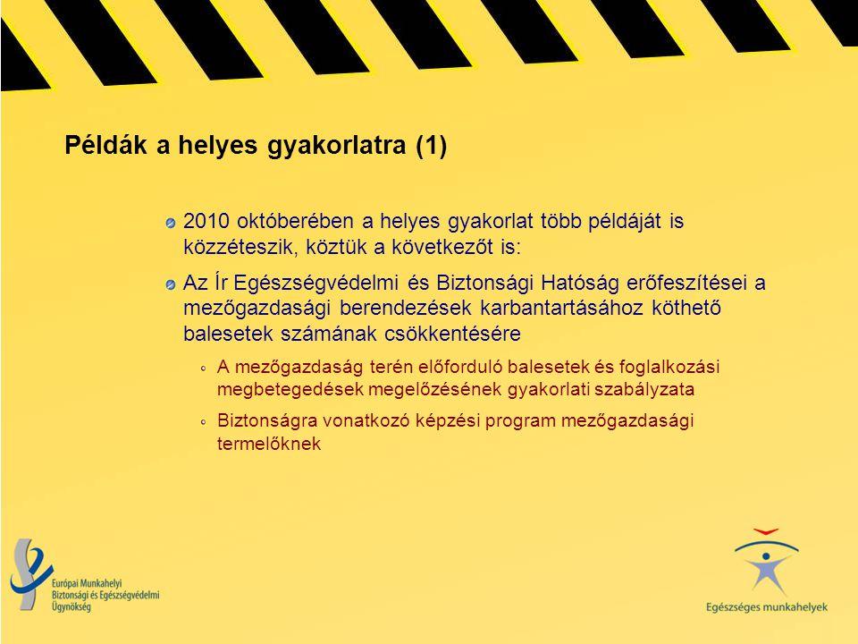Példák a helyes gyakorlatra (1) 2010 októberében a helyes gyakorlat több példáját is közzéteszik, köztük a következőt is: Az Ír Egészségvédelmi és Biz