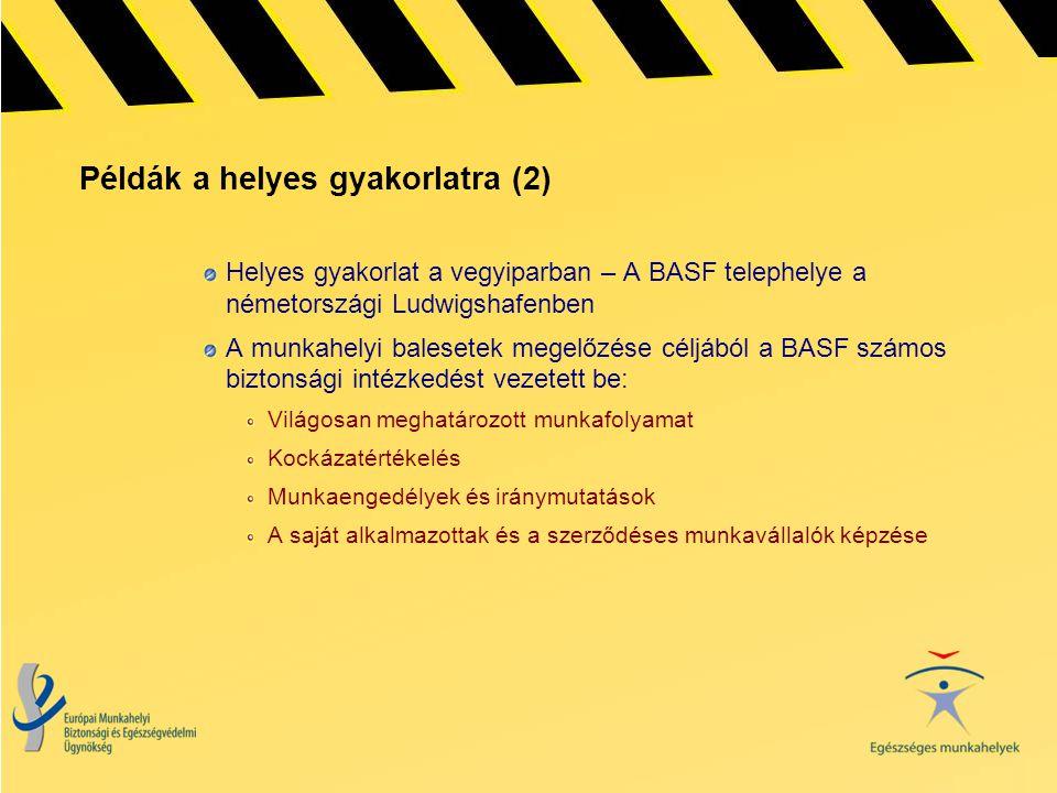Példák a helyes gyakorlatra (2) Helyes gyakorlat a vegyiparban – A BASF telephelye a németországi Ludwigshafenben A munkahelyi balesetek megelőzése cé