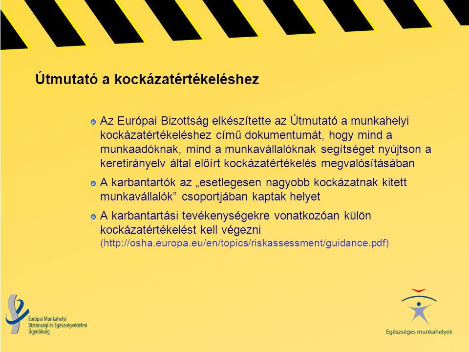 Útmutató a kockázatértékeléshez Az Európai Bizottság elkészítette az Útmutató a munkahelyi kockázatértékeléshez című dokumentumát, hogy mind a munkaad