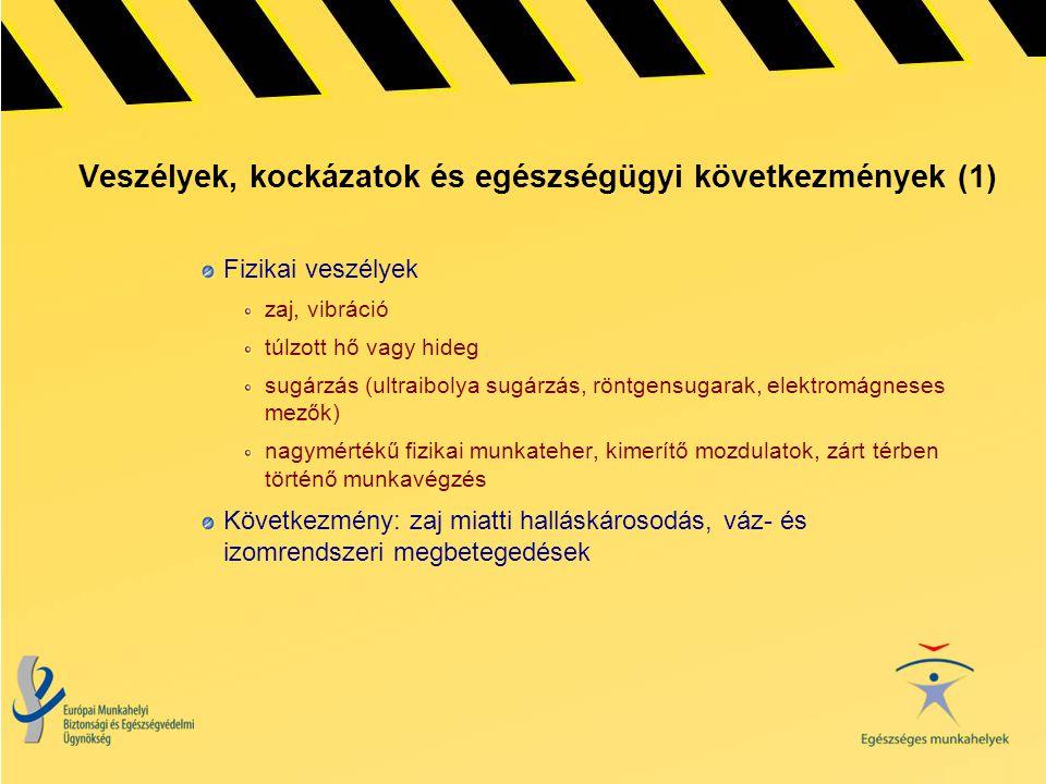 Veszélyek, kockázatok és egészségügyi következmények (1) Fizikai veszélyek zaj, vibráció túlzott hő vagy hideg sugárzás (ultraibolya sugárzás, röntgen