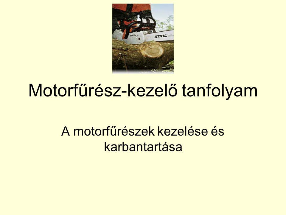 Motorfűrész-kezelő tanfolyam A motorfűrészek kezelése és karbantartása