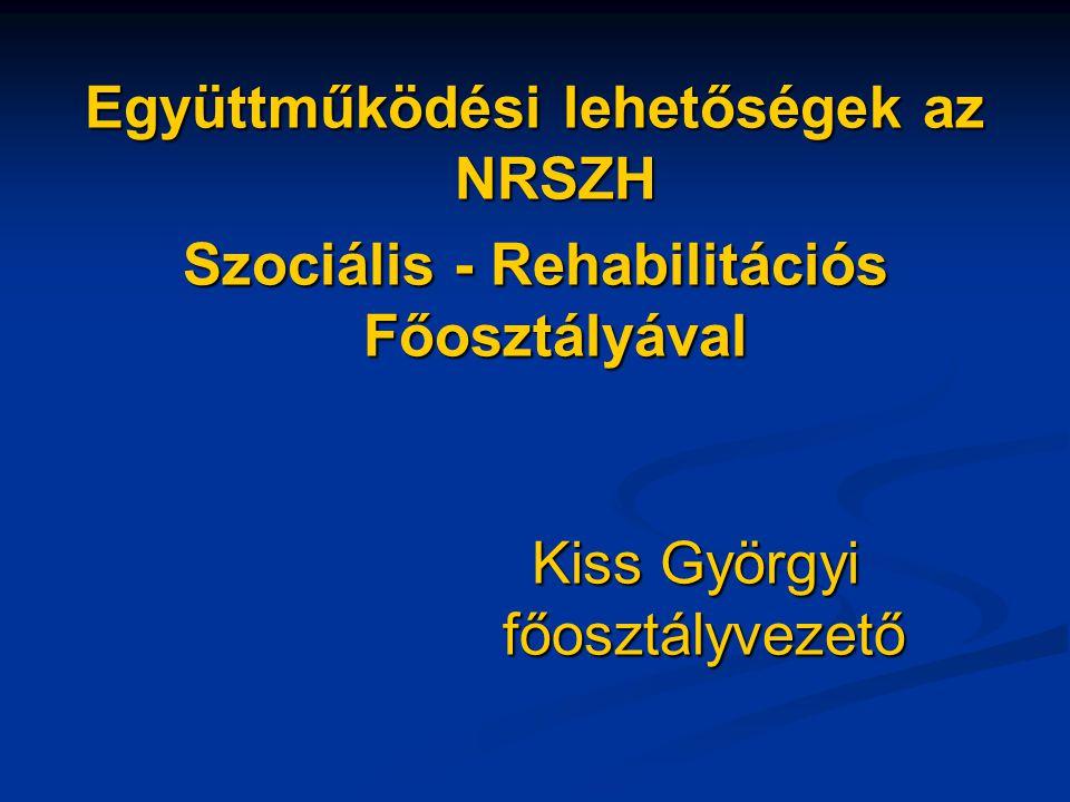 Együttműködési lehetőségek az NRSZH Szociális - Rehabilitációs Főosztályával Kiss Györgyi főosztályvezető
