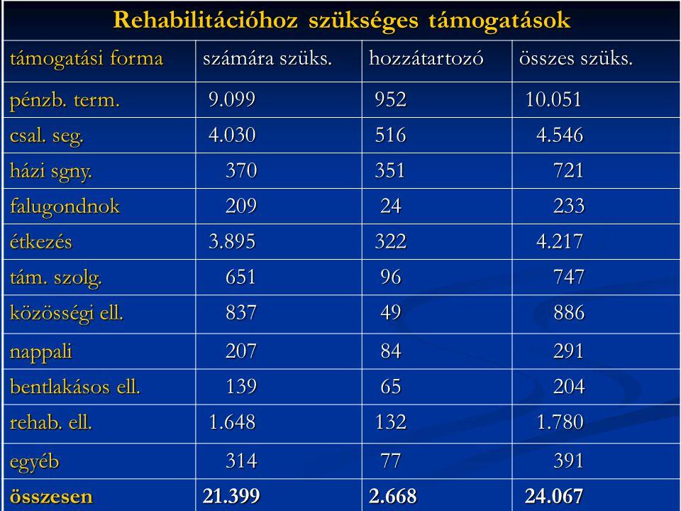 Rehabilitációhoz szükséges támogatások támogatási forma számára szüks.