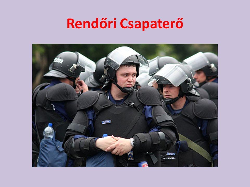 • Alapvető feladata a robbanóanyagok, robbanószerek felkutatása, elszállítása, hatástalanítása. A közveszéllyel fenyegetés (bombariadó )esetén az épül