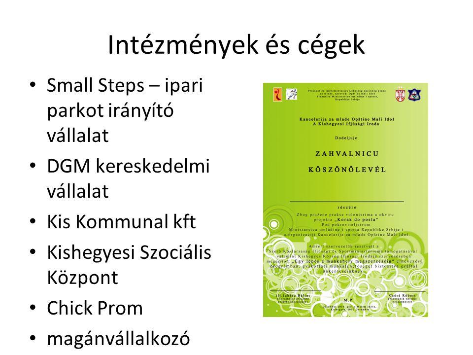 Intézmények és cégek • Small Steps – ipari parkot irányító vállalat • DGM kereskedelmi vállalat • Kis Kommunal kft • Kishegyesi Szociális Központ • Chick Prom • magánvállalkozó