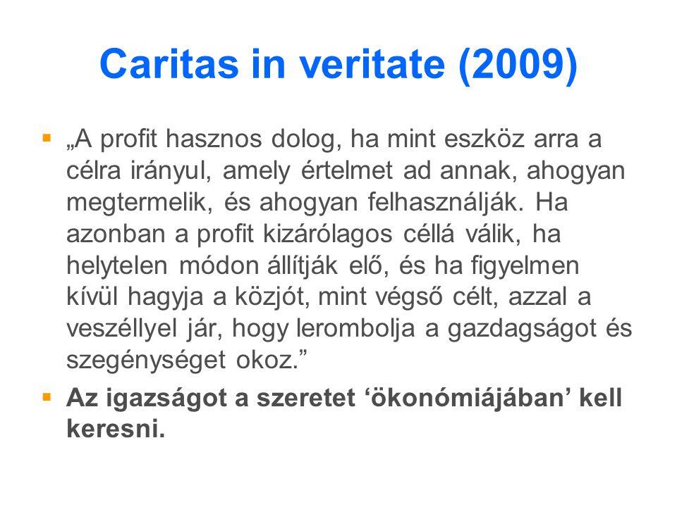 """Caritas in veritate (2009)  """"A profit hasznos dolog, ha mint eszköz arra a célra irányul, amely értelmet ad annak, ahogyan megtermelik, és ahogyan felhasználják."""