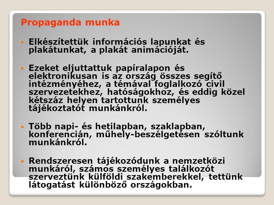 Propaganda munka  Elkészítettük információs lapunkat és plakátunkat, a plakát animációját.