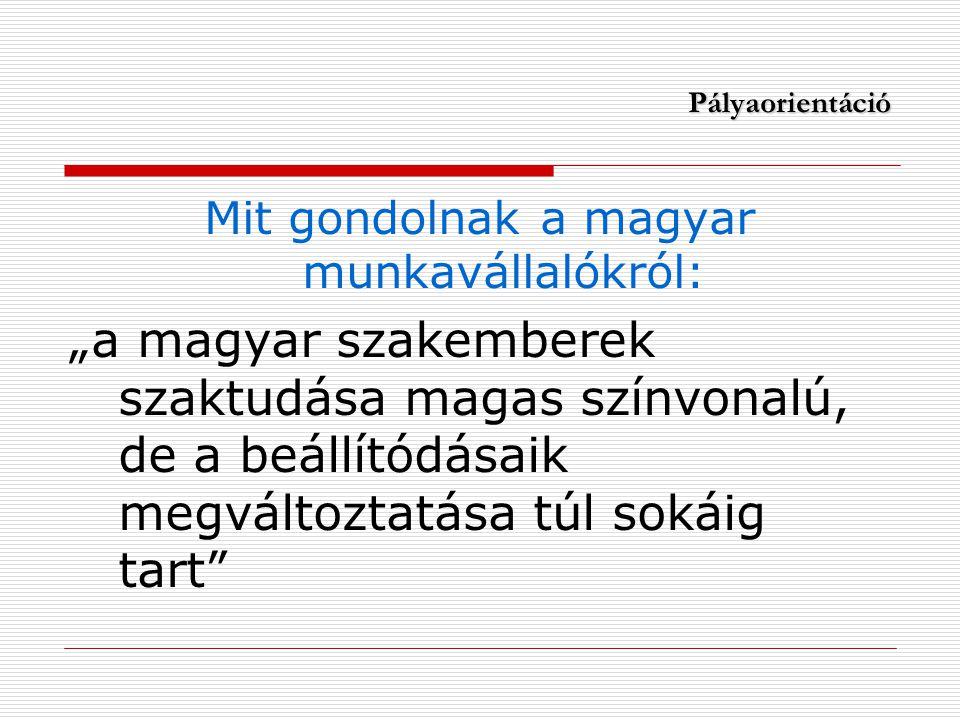 """Pályaorientáció Mit gondolnak a magyar munkavállalókról: """"a magyar szakemberek szaktudása magas színvonalú, de a beállítódásaik megváltoztatása túl sokáig tart"""