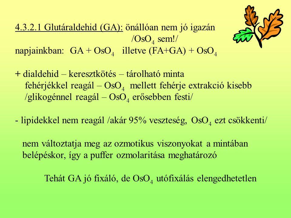 4.3.2.1 Glutáraldehid (GA): önállóan nem jó igazán /OsO 4 sem!/ napjainkban: GA + OsO 4 illetve (FA+GA) + OsO 4 + dialdehid – keresztkötés – tárolható