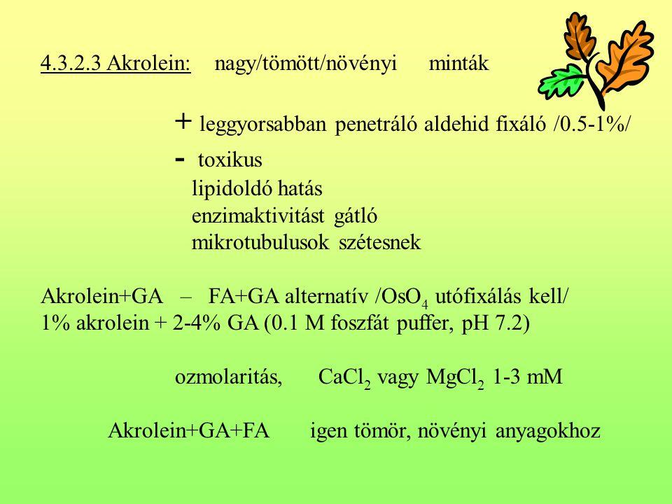 4.3.2.3 Akrolein: nagy/tömött/növényi minták + leggyorsabban penetráló aldehid fixáló /0.5-1%/ - toxikus lipidoldó hatás enzimaktivitást gátló mikrotu