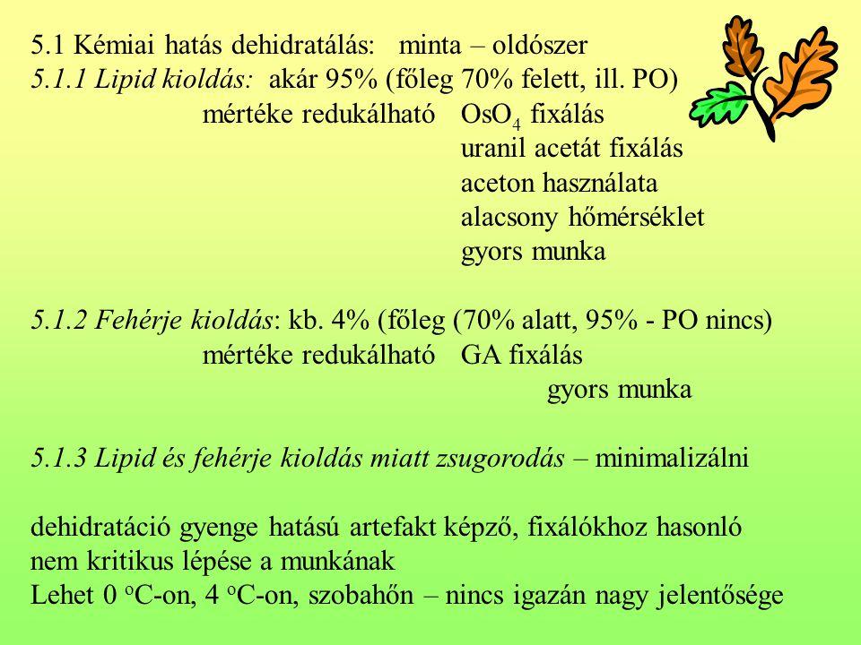 5.1 Kémiai hatás dehidratálás: minta – oldószer 5.1.1 Lipid kioldás: akár 95% (főleg 70% felett, ill. PO) mértéke redukálhatóOsO 4 fixálás uranil acet