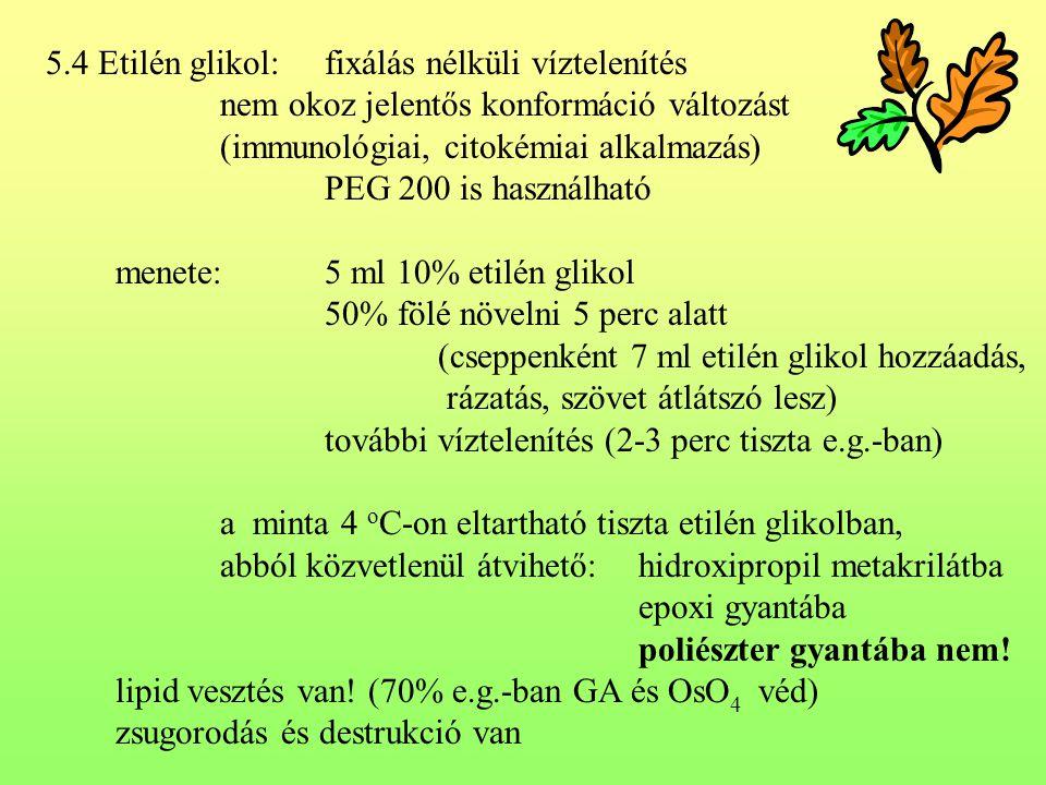 5.4 Etilén glikol: fixálás nélküli víztelenítés nem okoz jelentős konformáció változást (immunológiai, citokémiai alkalmazás) PEG 200 is használható m