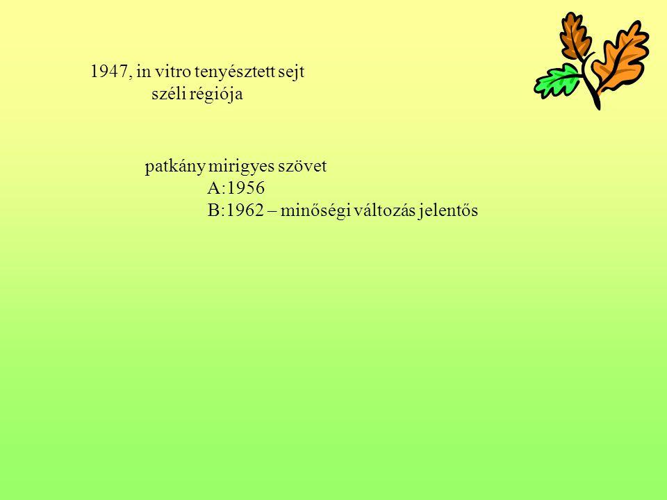 5.5 Intermedier folyadék: etanol, propilén oxid szerepe: intermedier dehidratáló infiltráció közege I.