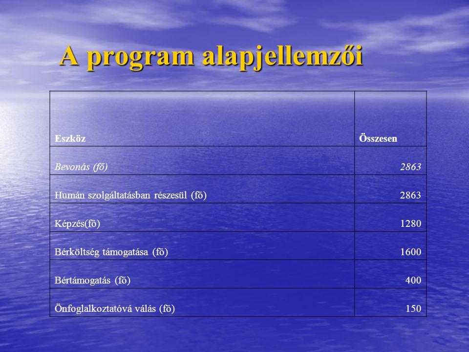 A program alapjellemzői EszközÖsszesen Bevonás (fő)2863 Humán szolgáltatásban részesül (fő)2863 Képzés(fő)1280 Bérköltség támogatása (fő)1600 Bértámogatás (fő)400 Önfoglalkoztatóvá válás (fő)150
