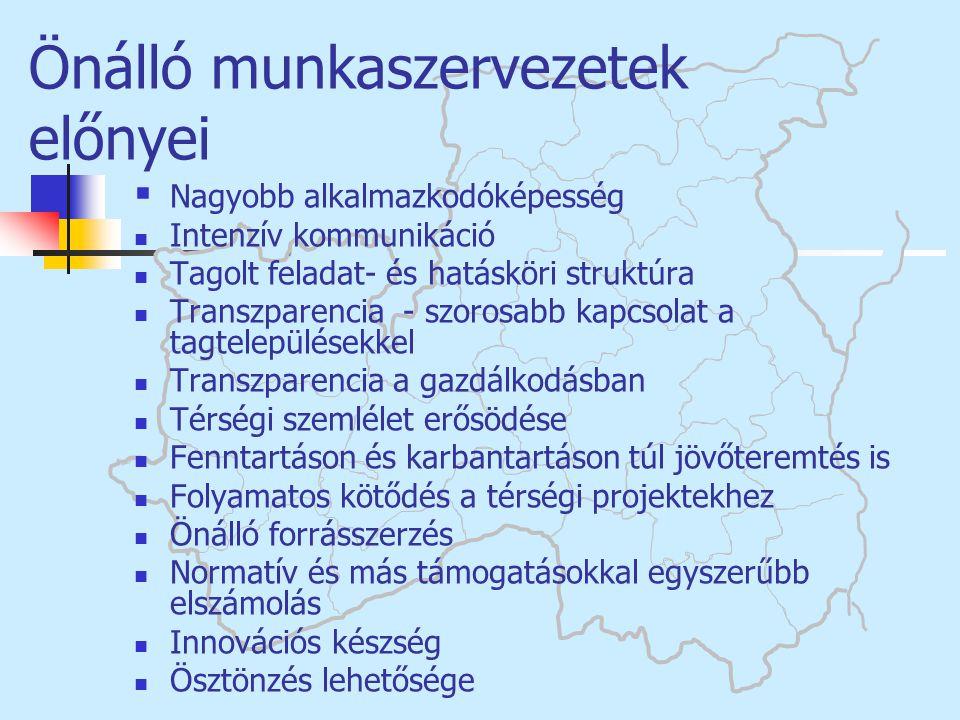 Önálló munkaszervezetek előnyei  Nagyobb alkalmazkodóképesség  Intenzív kommunikáció  Tagolt feladat- és hatásköri struktúra  Transzparencia - szo