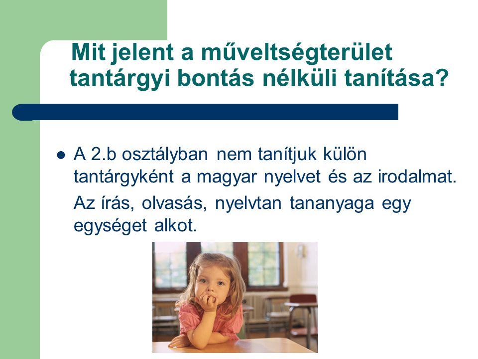 Mit jelent a műveltségterület tantárgyi bontás nélküli tanítása?  A 2.b osztályban nem tanítjuk külön tantárgyként a magyar nyelvet és az irodalmat.