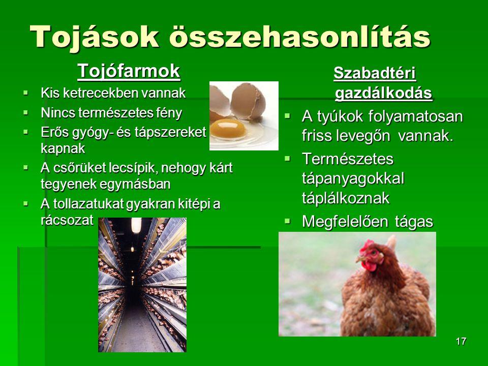 17 Tojások összehasonlítás Tojófarmok  Kis ketrecekben vannak  Nincs természetes fény  Erős gyógy- és tápszereket kapnak  A csőrüket lecsípik, neh