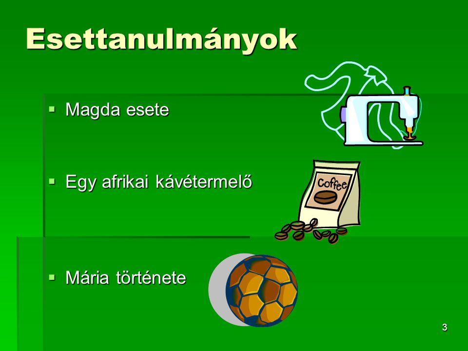 3 Esettanulmányok  Magda esete  Egy afrikai kávétermelő  Mária története