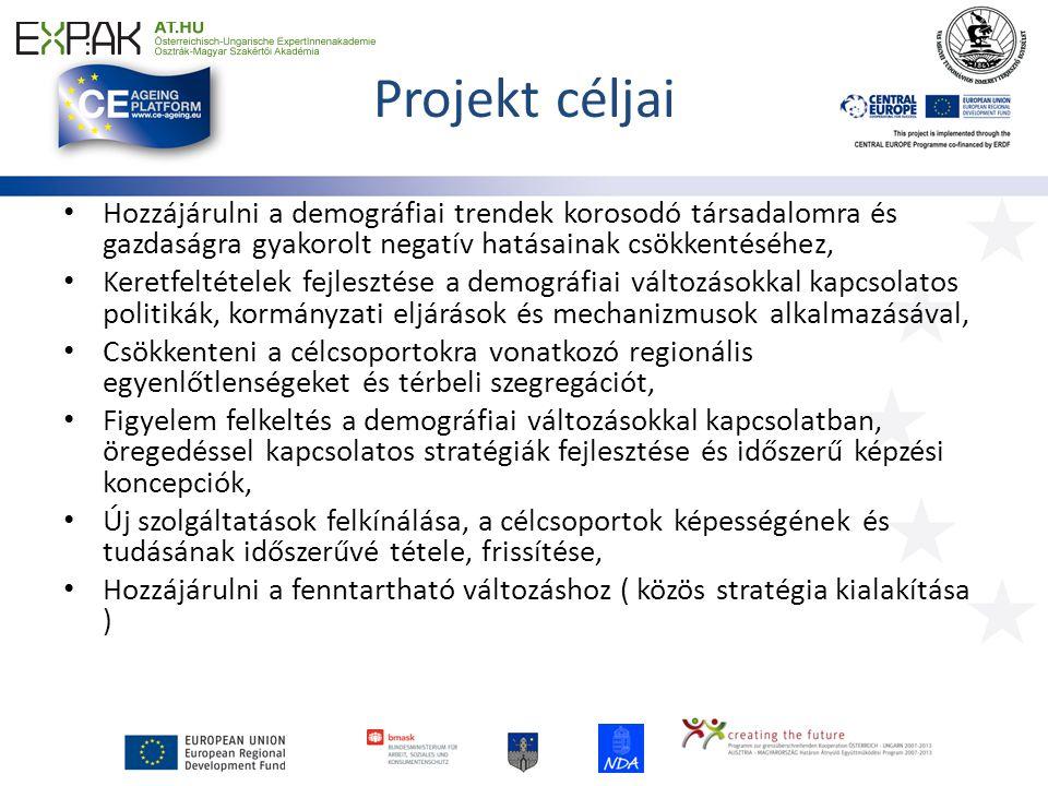 Projekt struktúrája