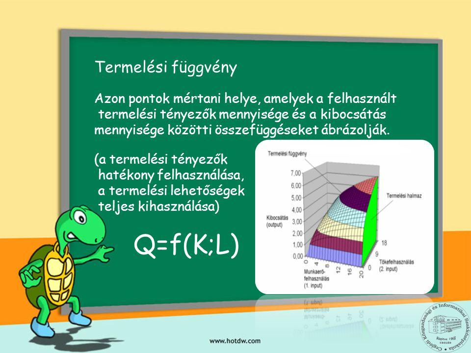 Termelési függvény Azon pontok mértani helye, amelyek a felhasznált termelési tényezők mennyisége és a kibocsátás mennyisége közötti összefüggéseket ábrázolják.