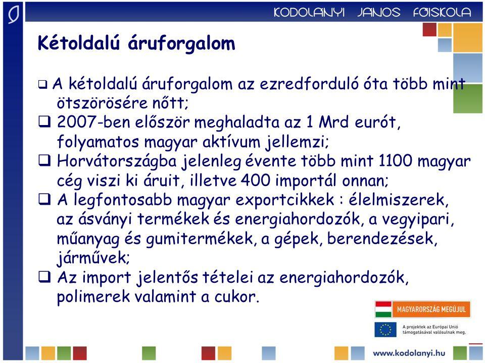 Energia  megújuló energiaforrások hatékonyabb kihasználása;  az energiafüggőség csökkentése;  a két ország közötti, Ernestinovot Péccsel összekötő új magas feszültségű elektromos távvezeték;  együttműködés a szénhidrogének ipari hasznosítására vonatkozó közös vállalásokról;  Mol és az INA együttműködése, problémák;  uniós NETS projekt, mely a két ország gázvezetékeit köti össze, az Adria felől likvid gáz továbbítását teszi lehetővé;  Krk-ben folyékony földgáz befogadására alkalmas terminál (LNG) kialakítása;  340 km vezeték megépítése, a két ország gázvezetékei összekötésére;
