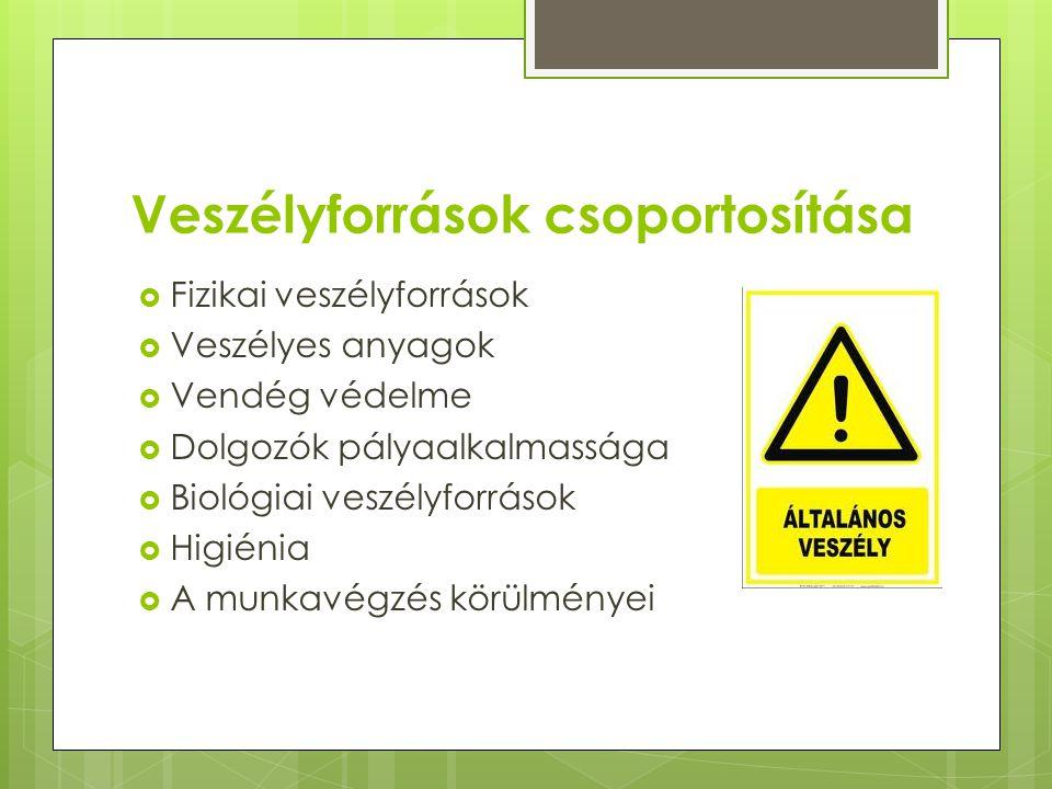 Veszélyforrások csoportosítása  Fizikai veszélyforrások  Veszélyes anyagok  Vendég védelme  Dolgozók pályaalkalmassága  Biológiai veszélyforrások