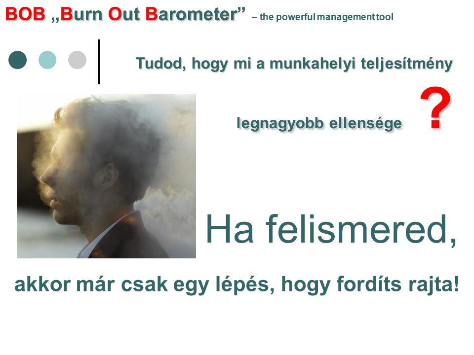 """BOBBurn Out Barometer BOB """"Burn Out Barometer – the powerful management tool Lendület, energia, szervezeti összhang EZT NYERHETED!"""