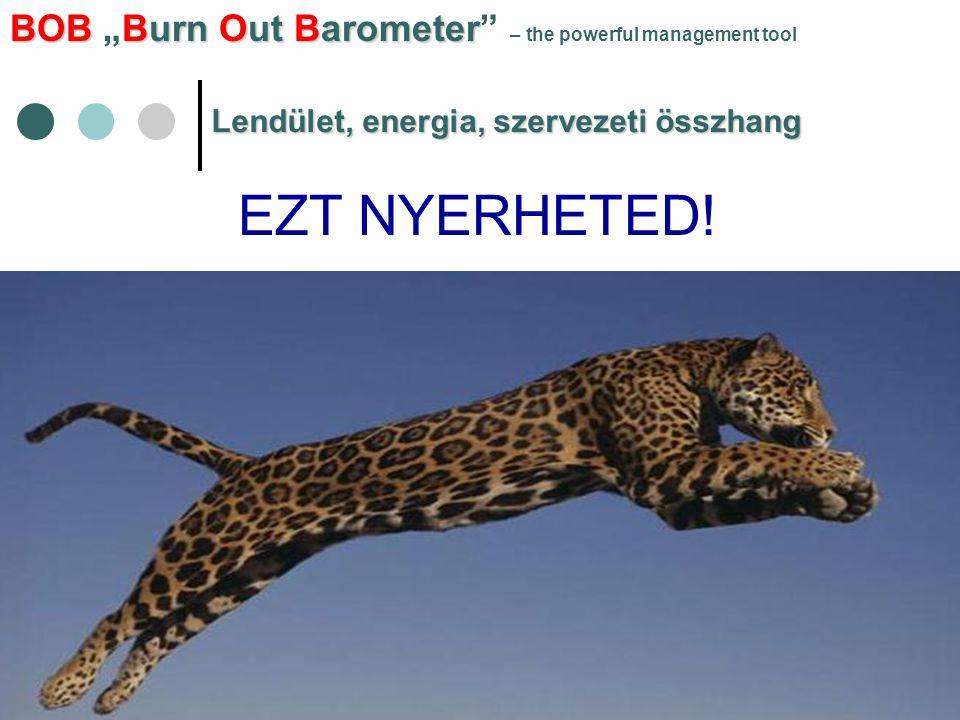 """BOBBurn Out Barometer BOB """"Burn Out Barometer"""" – the powerful management tool Lendület, energia, szervezeti összhang EZT NYERHETED!"""