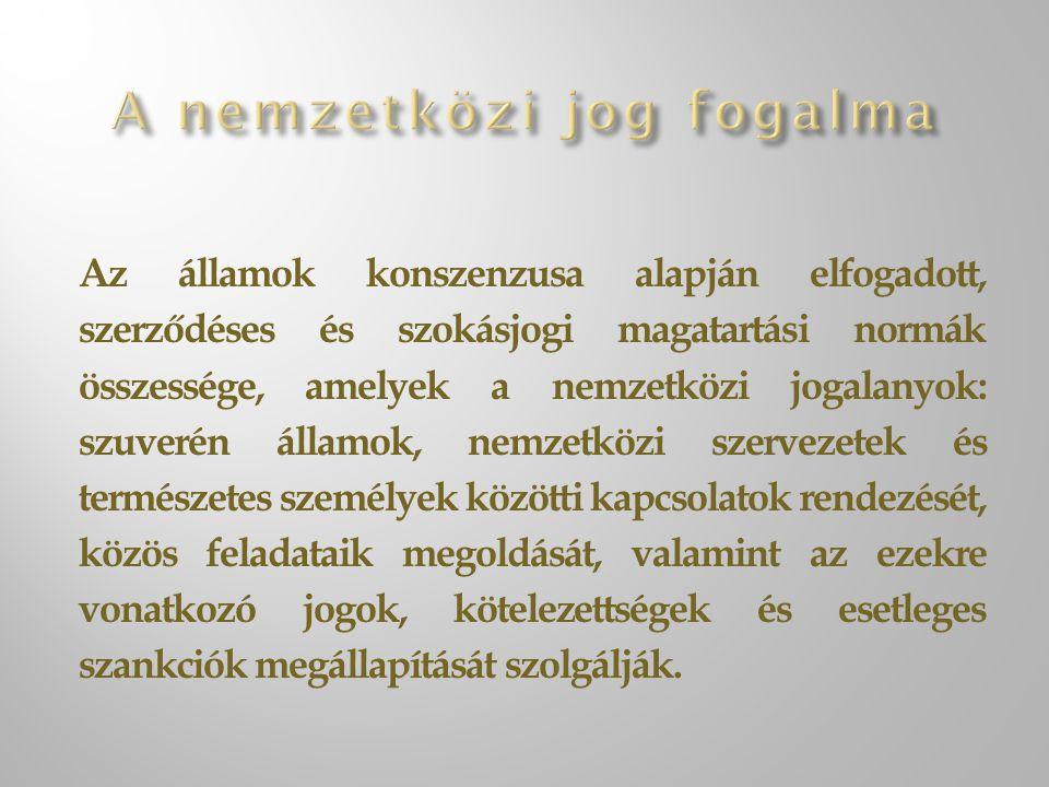 Az államok konszenzusa alapján elfogadott, szerződéses és szokásjogi magatartási normák összessége, amelyek a nemzetközi jogalanyok: szuverén államok, nemzetközi szervezetek és természetes személyek közötti kapcsolatok rendezését, közös feladataik megoldását, valamint az ezekre vonatkozó jogok, kötelezettségek és esetleges szankciók megállapítását szolgálják.