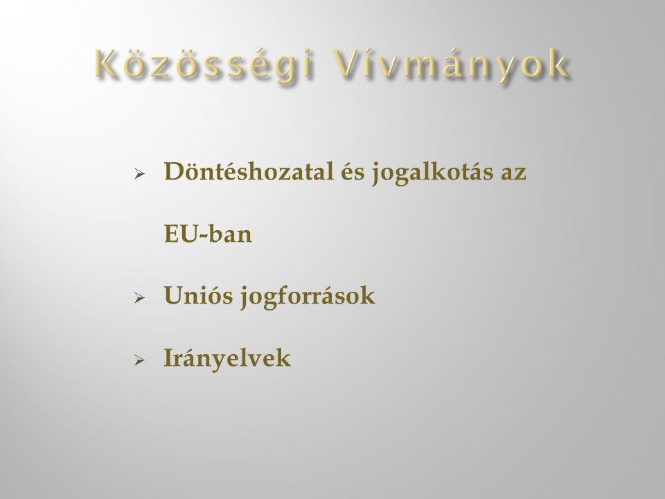 Döntéshozatal és jogalkotás az EU-ban  Uniós jogforrások  Irányelvek