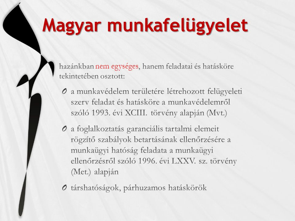 Magyar munkafelügyelet