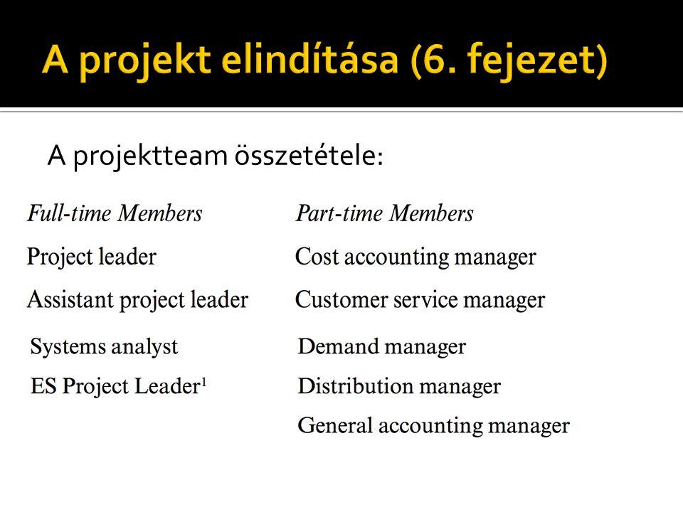 A projektteam összetétele:
