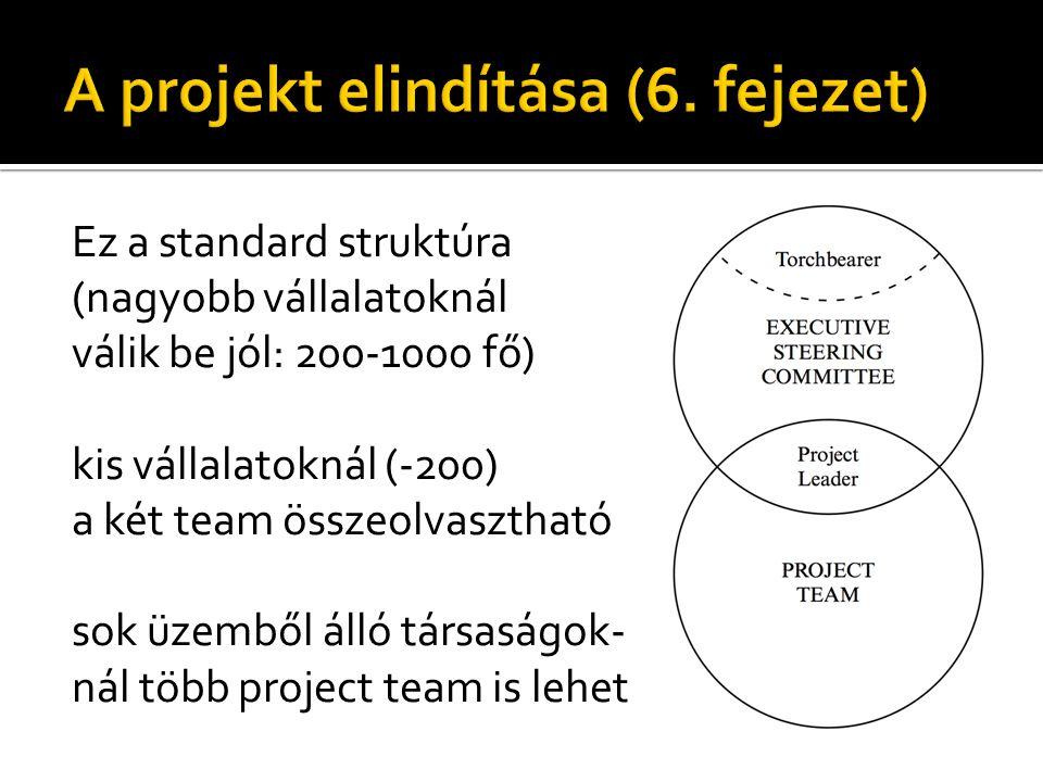 Ez a standard struktúra (nagyobb vállalatoknál válik be jól: 200-1000 fő) kis vállalatoknál (-200) a két team összeolvasztható sok üzemből álló társaságok- nál több project team is lehet