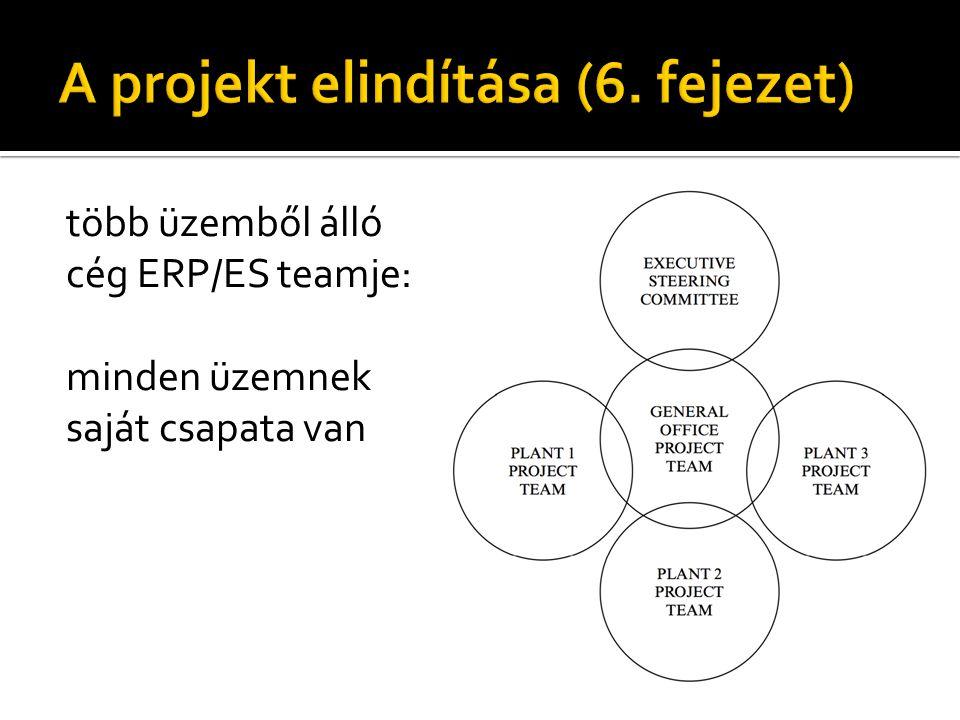 több üzemből álló cég ERP/ES teamje: minden üzemnek saját csapata van