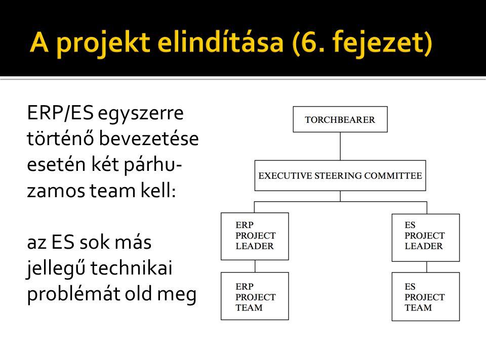ERP/ES egyszerre történő bevezetése esetén két párhu- zamos team kell: az ES sok más jellegű technikai problémát old meg