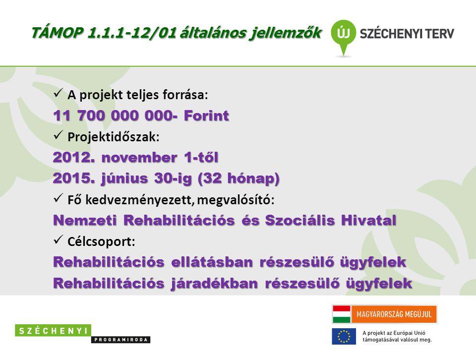 TÁMOP 1.1.1-12/01 általános jellemzők  A projekt teljes forrása: 11 700 000 000- Forint  Projektidőszak: 2012. november 1-től 2015. június 30-ig (32