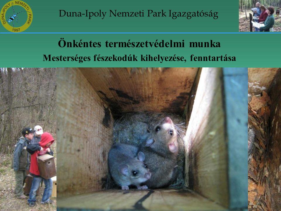 Duna-Ipoly Nemzeti Park Igazgatóság Önkéntes természetvédelmi munka Mesterséges fészekodúk kihelyezése, fenntartása