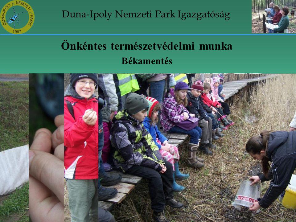 Duna-Ipoly Nemzeti Park Igazgatóság Önkéntes természetvédelmi munka Békamentés