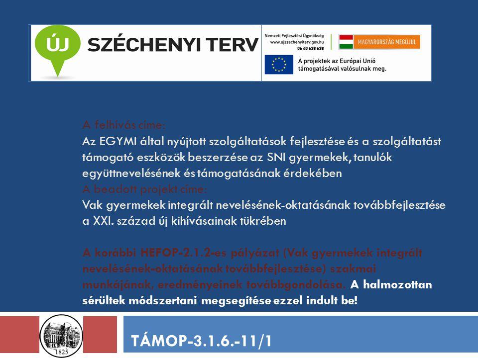 A felhívás címe: Az EGYMI által nyújtott szolgáltatások fejlesztése és a szolgáltatást támogató eszközök beszerzése az SNI gyermekek, tanulók együttne