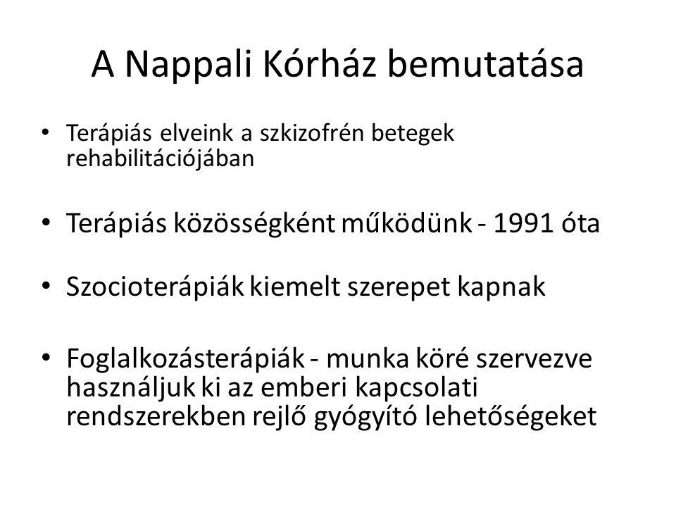 A Nappali Kórház bemutatása • Terápiás elveink a szkizofrén betegek rehabilitációjában • Terápiás közösségként működünk - 1991 óta • Szocioterápiák ki