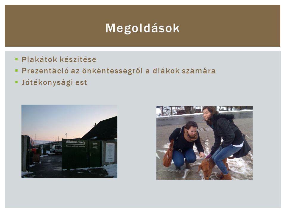  Plakátok készítése  Prezentáció az önkéntességről a diákok számára  Jótékonysági est Megoldások