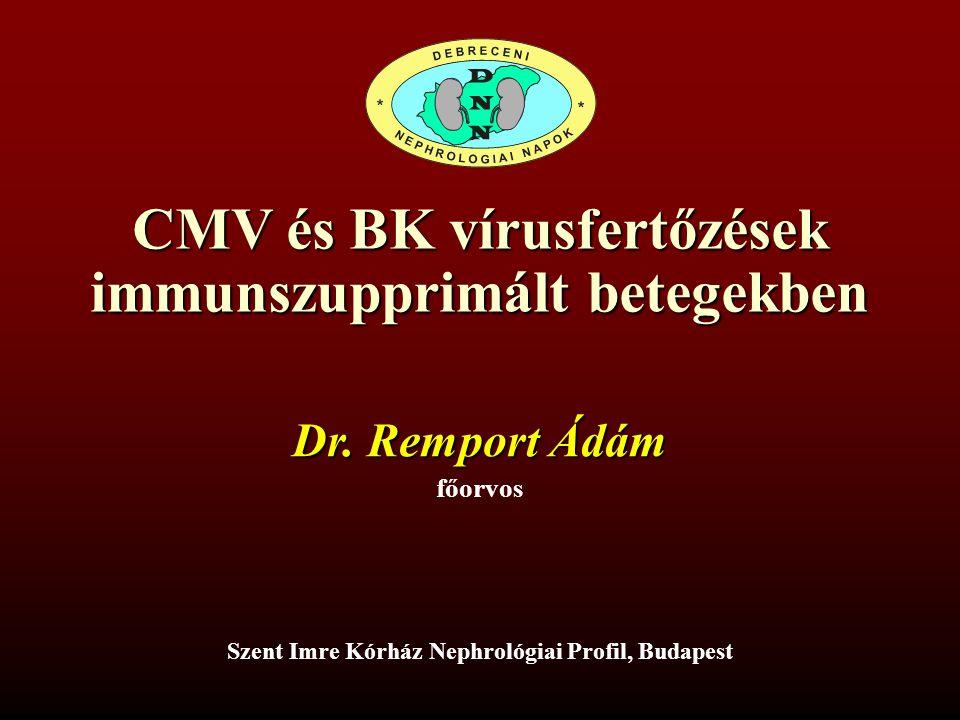 CMV és BK vírusfertőzések immunszupprimált betegekben Szent Imre Kórház Nephrológiai Profil, Budapest Dr. Remport Ádám főorvos