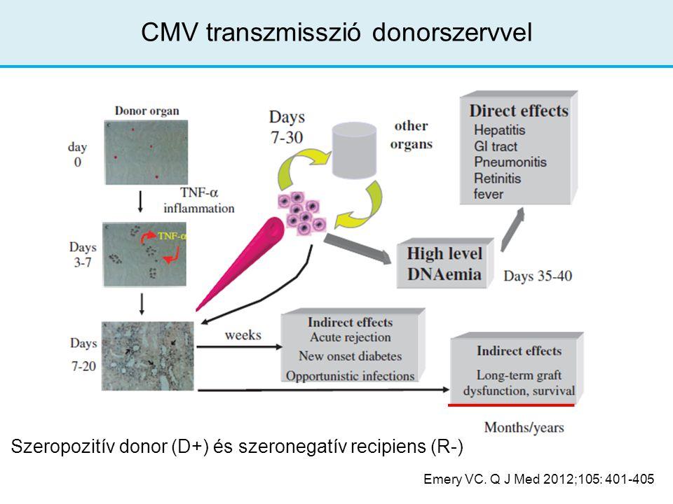 CMV transzmisszió donorszervvel Emery VC. Q J Med 2012;105: 401-405 Szeropozitív donor (D+) és szeronegatív recipiens (R-)