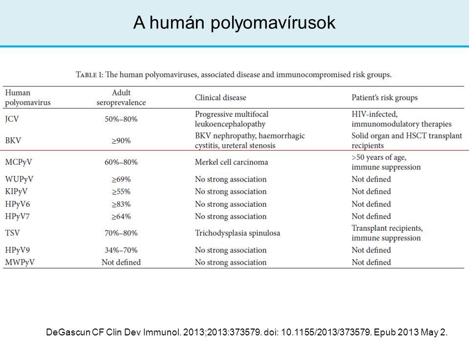 A humán polyomavírusok DeGascun CF Clin Dev Immunol. 2013;2013:373579. doi: 10.1155/2013/373579. Epub 2013 May 2.