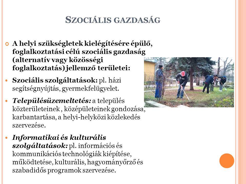 S ZOCIÁLIS GAZDASÁG A helyi szükségletek kielégítésére épülő, foglalkoztatási célú szociális gazdaság (alternatív vagy közösségi foglalkoztatás) jelle