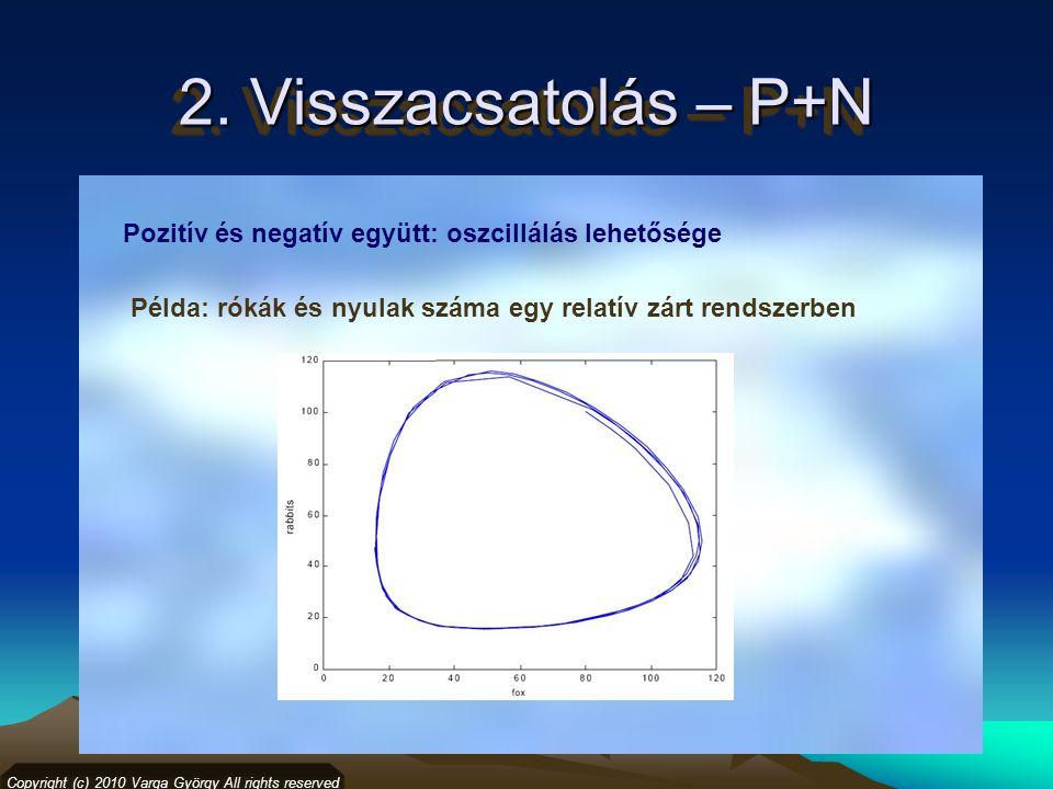 2. Visszacsatolás – P+N Copyright (c) 2010 Varga György All rights reserved Pozitív és negatív együtt: oszcillálás lehetősége Példa: rókák és nyulak s